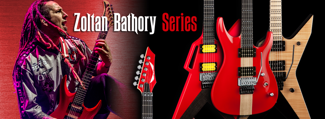 Zoltan Bathory Series